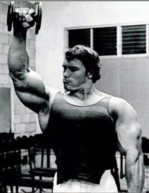 http://img.fitnes.lv/2/Arnold_2891026454.jpg