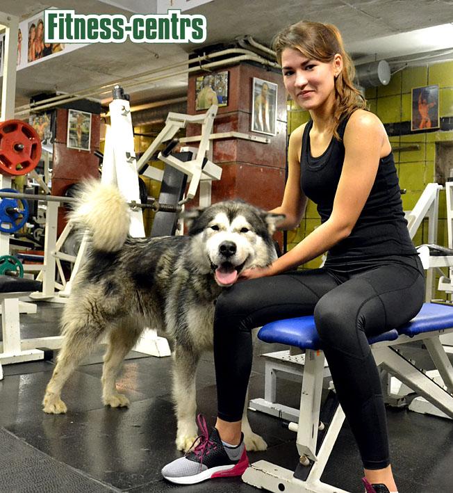 http://img.fitnes.lv/2/Fitness_centrs_39308638.jpg