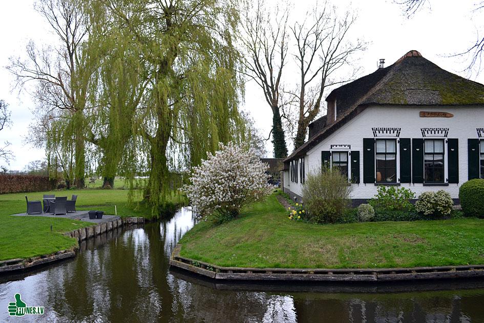 http://img.fitnes.lv/2/Holland_0099.jpg