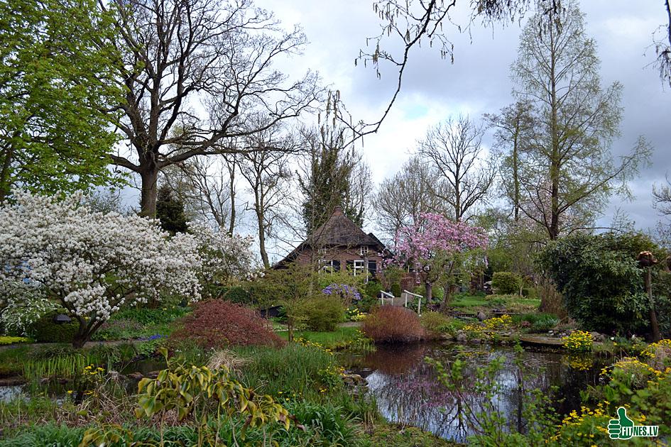 http://img.fitnes.lv/2/Holland_0146.jpg