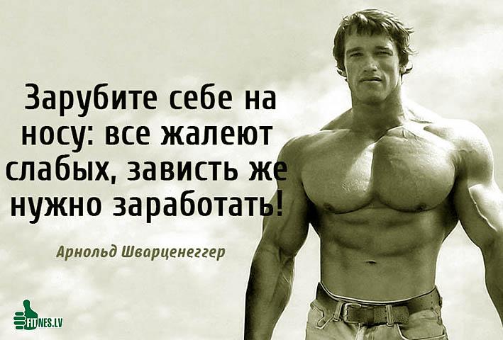 http://img.fitnes.lv/2/Schwarzenegger_2903412.jpg