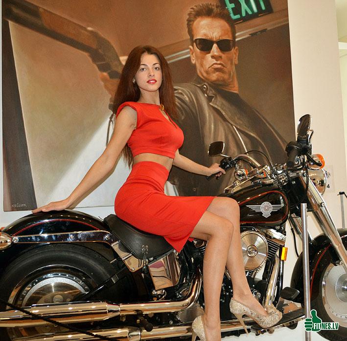 http://img.fitnes.lv/2/Schwarzenegger_784092.jpg