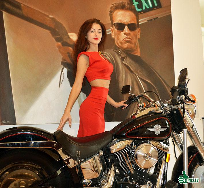 http://img.fitnes.lv/2/Schwarzenegger_784093.jpg