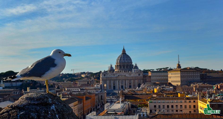 http://img.fitnes.lv/2/Vatikan_0159.jpg