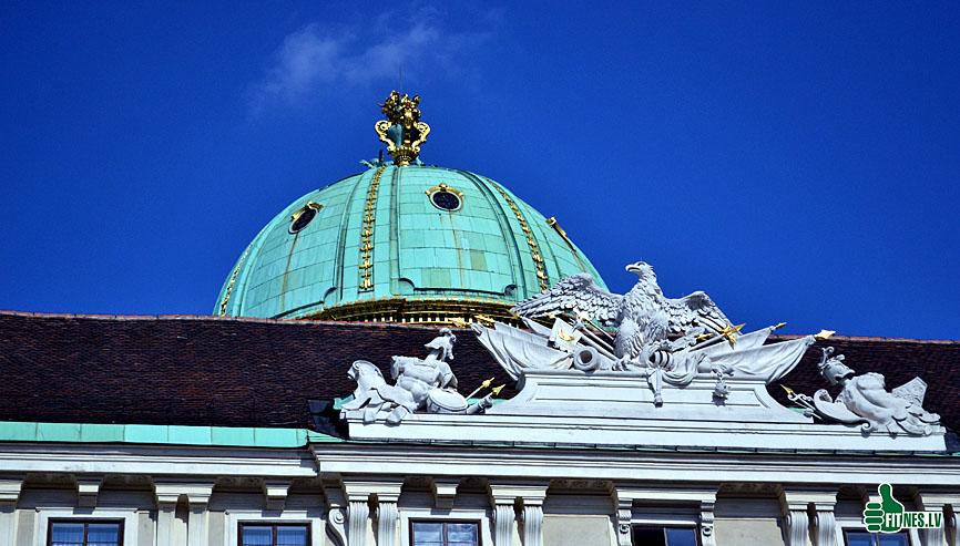 http://img.fitnes.lv/2/Vienna_789_0025.jpg