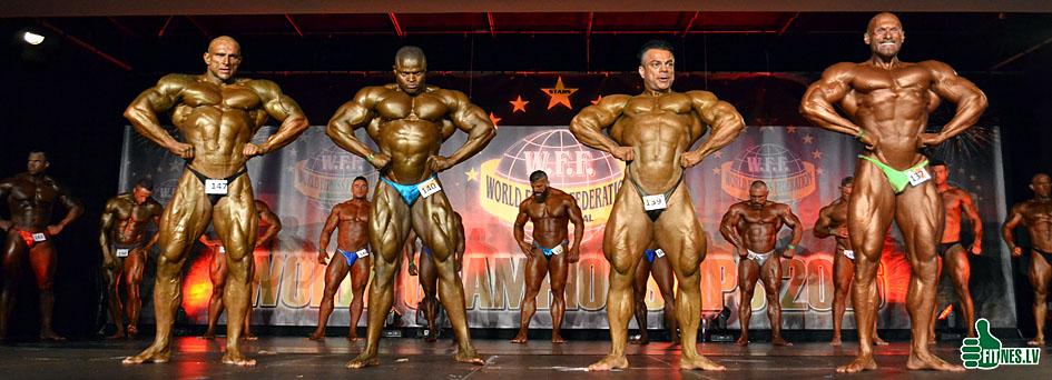 http://img.fitnes.lv/2/WFF_Worls_championship_2016_0727.jpg