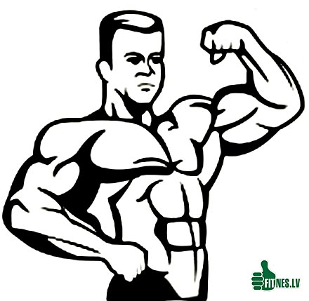 http://img.fitnes.lv/2/anime_bodybuilding_49274365.jpg