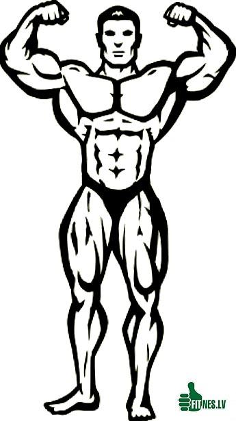 http://img.fitnes.lv/2/anime_bodybuilding_88909878.jpg