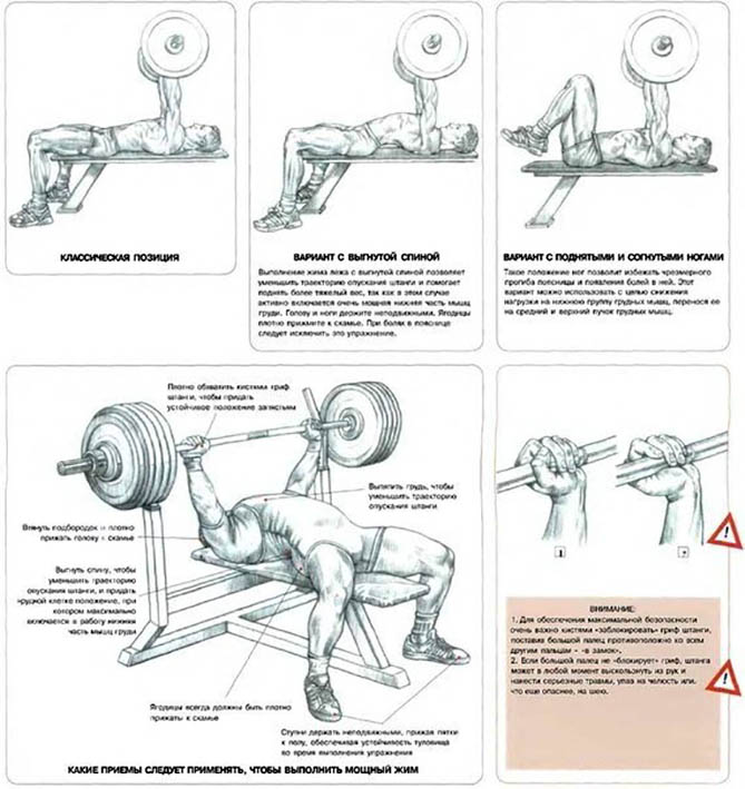 http://img.fitnes.lv/2/benchpress_38924.jpg
