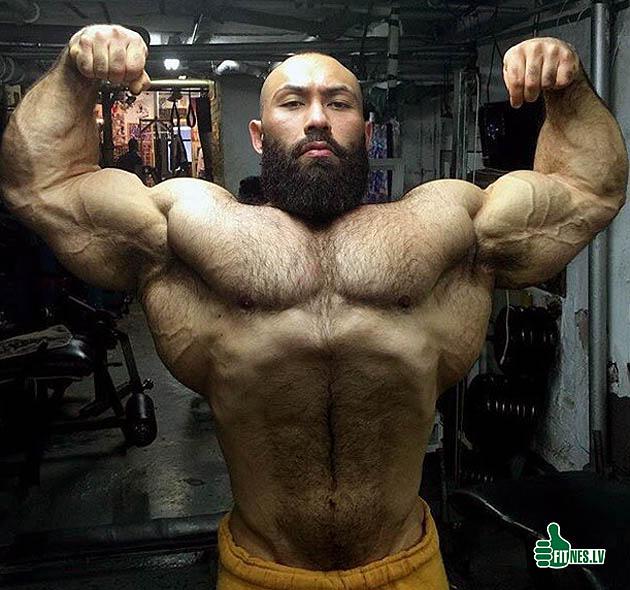 http://img.fitnes.lv/2/bodybuiding_828378.jpg
