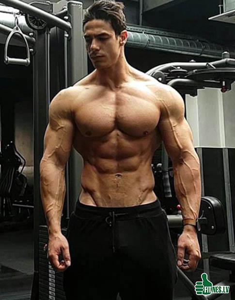 http://img.fitnes.lv/2/bodybuilding-112903.jpg