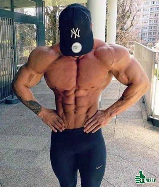 http://img.fitnes.lv/2/bodybuilding-2002939045413.jpg