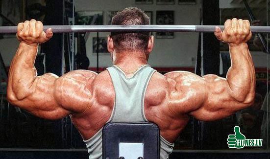 http://img.fitnes.lv/2/bodybuilding_028276445.jpg