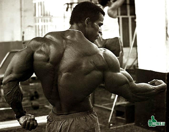 http://img.fitnes.lv/2/bodybuilding_092899.jpg