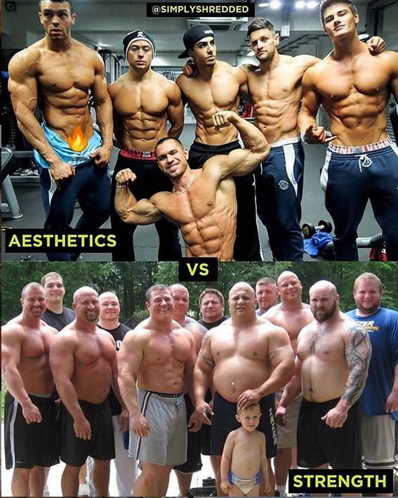 http://img.fitnes.lv/2/bodybuilding_10199029368193.jpg