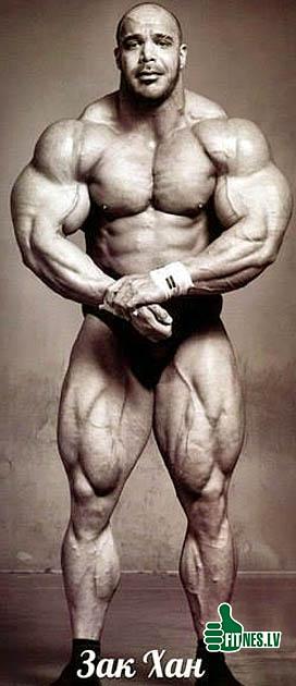 http://img.fitnes.lv/2/bodybuilding_132967.jpg
