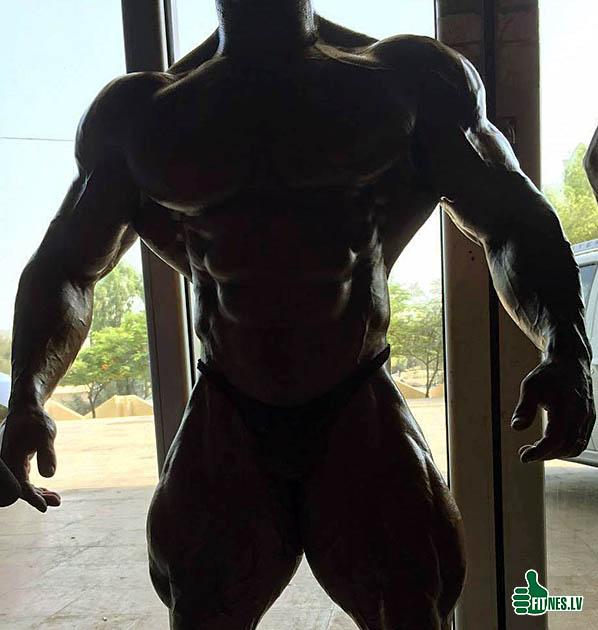 http://img.fitnes.lv/2/bodybuilding_209154.jpg