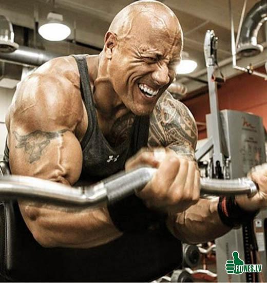 http://img.fitnes.lv/2/bodybuilding_22203030267193.jpg