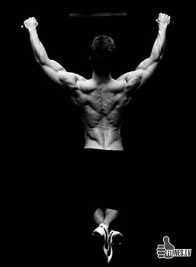 http://img.fitnes.lv/2/bodybuilding_2223934.jpg