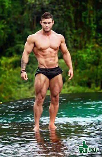 http://img.fitnes.lv/2/bodybuilding_234564262.jpg
