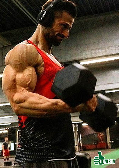 http://img.fitnes.lv/2/bodybuilding_254435683.jpg