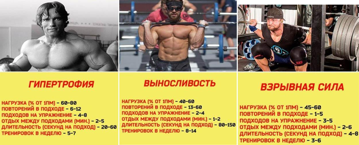 http://img.fitnes.lv/2/bodybuilding_267383892.jpg
