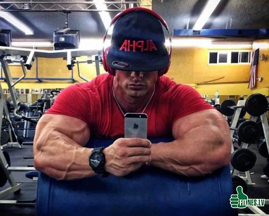 http://img.fitnes.lv/2/bodybuilding_27903762.jpg