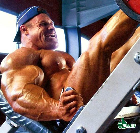 http://img.fitnes.lv/2/bodybuilding_2830800.jpg