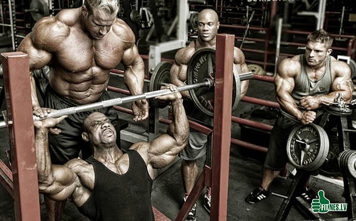 http://img.fitnes.lv/2/bodybuilding_283765.jpg