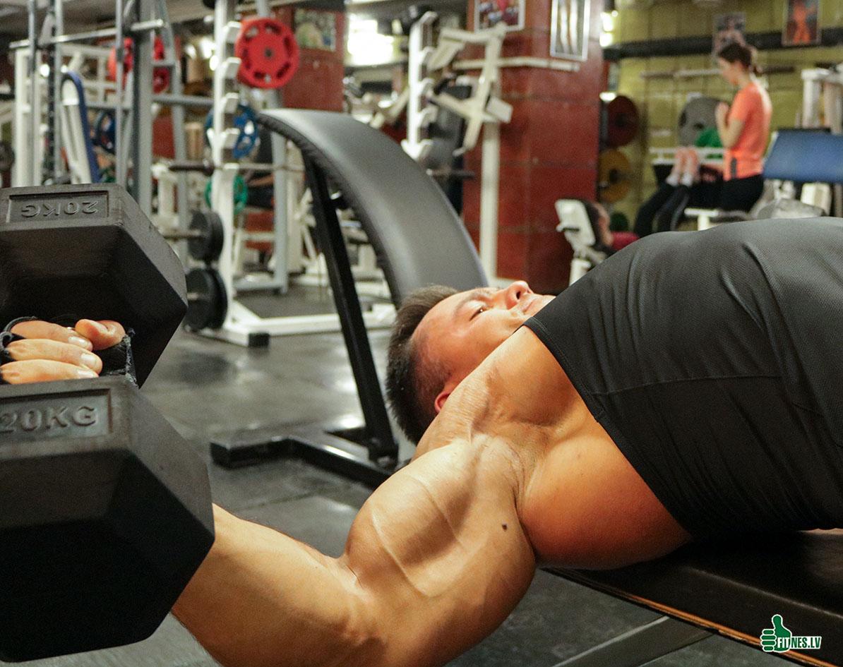 http://img.fitnes.lv/2/bodybuilding_28919764_9268.jpg