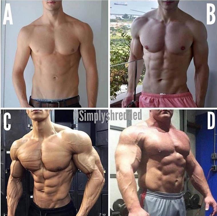 http://img.fitnes.lv/2/bodybuilding_29198829472.jpg