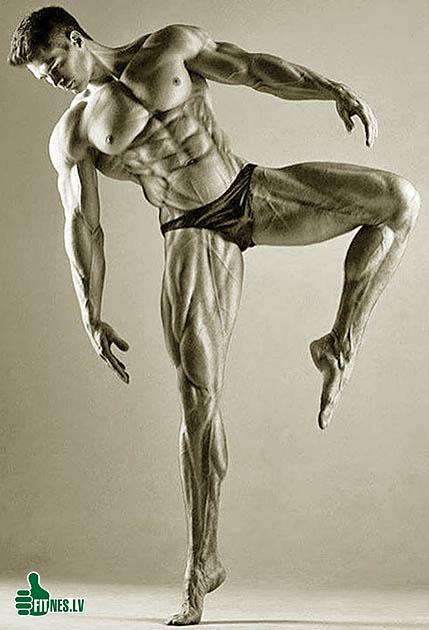 http://img.fitnes.lv/2/bodybuilding_293097.jpg