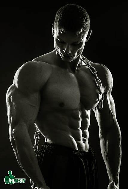 http://img.fitnes.lv/2/bodybuilding_29376659.jpg
