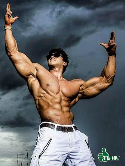 http://img.fitnes.lv/2/bodybuilding_2939045.jpg