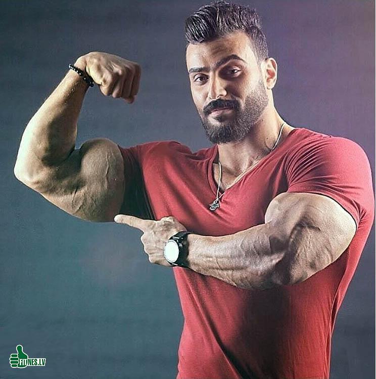http://img.fitnes.lv/2/bodybuilding_29827781641.jpg