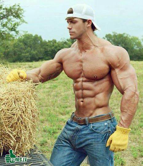 http://img.fitnes.lv/2/bodybuilding_298832.jpg