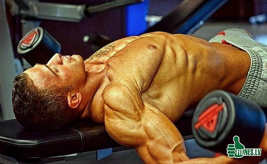 http://img.fitnes.lv/2/bodybuilding_344930865658.jpg