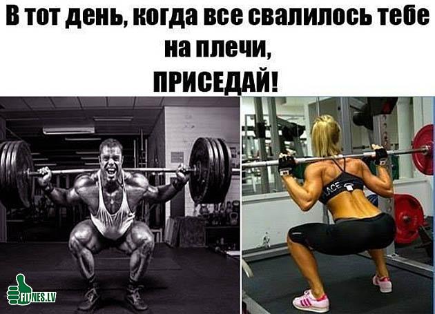 http://img.fitnes.lv/2/bodybuilding_3453784466.jpg