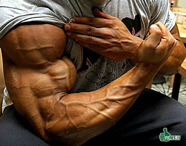 http://img.fitnes.lv/2/bodybuilding_347599082.jpg