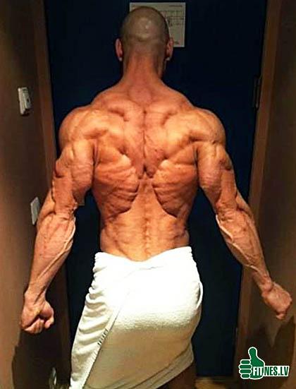 http://img.fitnes.lv/2/bodybuilding_3739040.jpg
