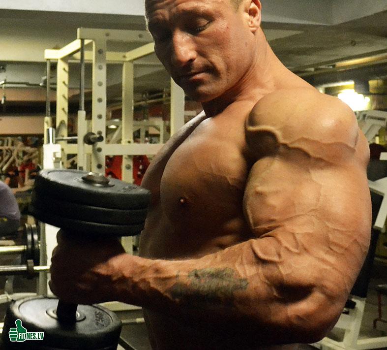 http://img.fitnes.lv/2/bodybuilding_38675_0160.jpg