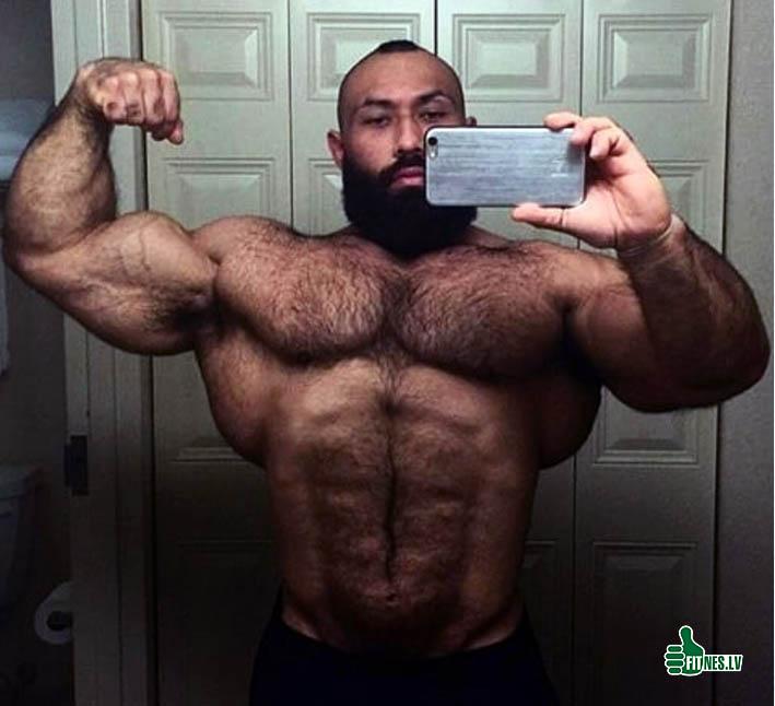 http://img.fitnes.lv/2/bodybuilding_3998169353.jpg