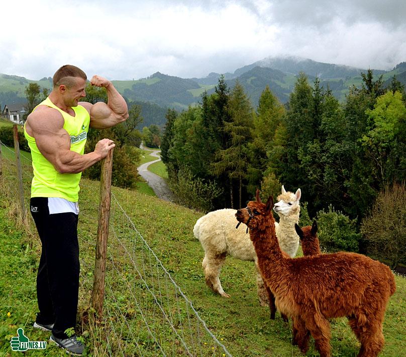 http://img.fitnes.lv/2/bodybuilding_638_0105.jpg