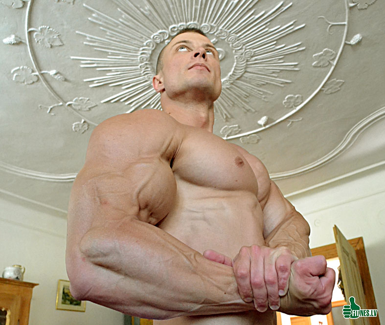http://img.fitnes.lv/2/bodybuilding_725_0060.jpg