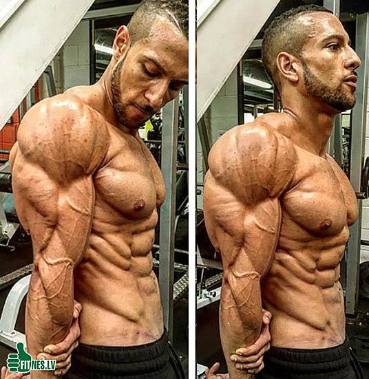 http://img.fitnes.lv/2/bodybuilding_8273556.jpg