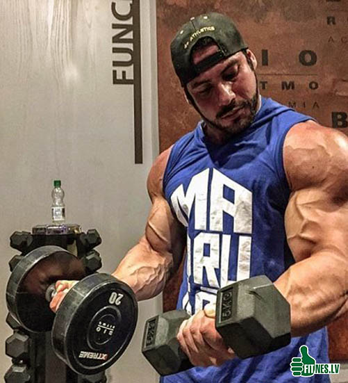 http://img.fitnes.lv/2/bodybuilding_87273293772.jpg
