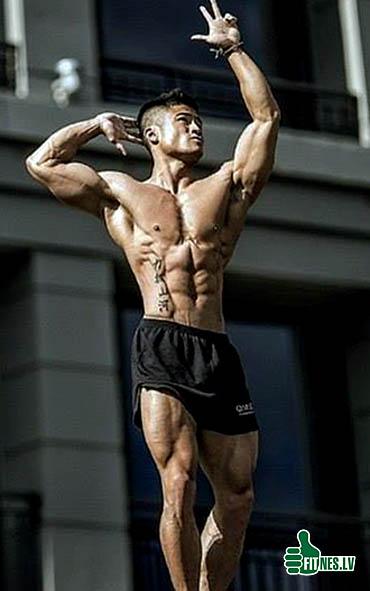 http://img.fitnes.lv/2/bodybuilding_888390300.jpg