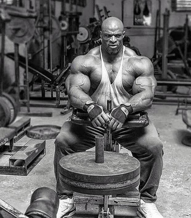http://img.fitnes.lv/2/bodybuilding_88875689771.jpg