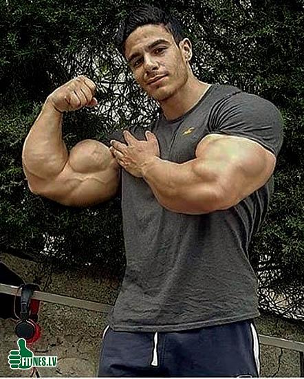 http://img.fitnes.lv/2/bodybuilding_8996534.jpg