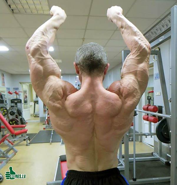 http://img.fitnes.lv/2/bodybuilding_927390.jpg